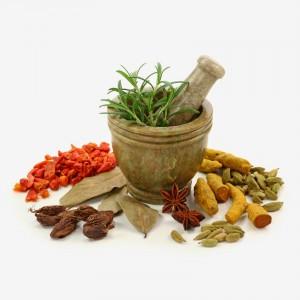 Фитотерапевты рекомендуют для лечения травы и специи