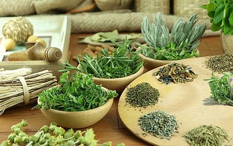 Лечение гипертонии мочегонными травами и сборами