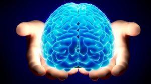 brain-650x365