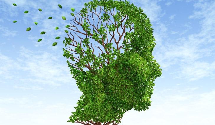 Что такое деменция или слабоумие, симптомы и лечение заболевания